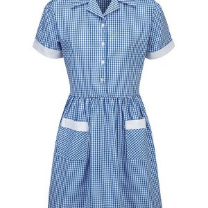 Summer Corded Gingham Dress (Blue)