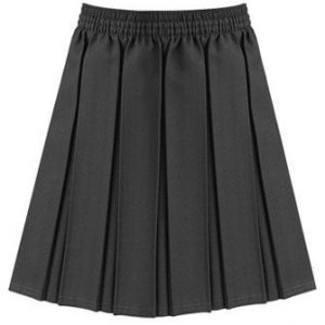 Girls Box Pleat Skirt